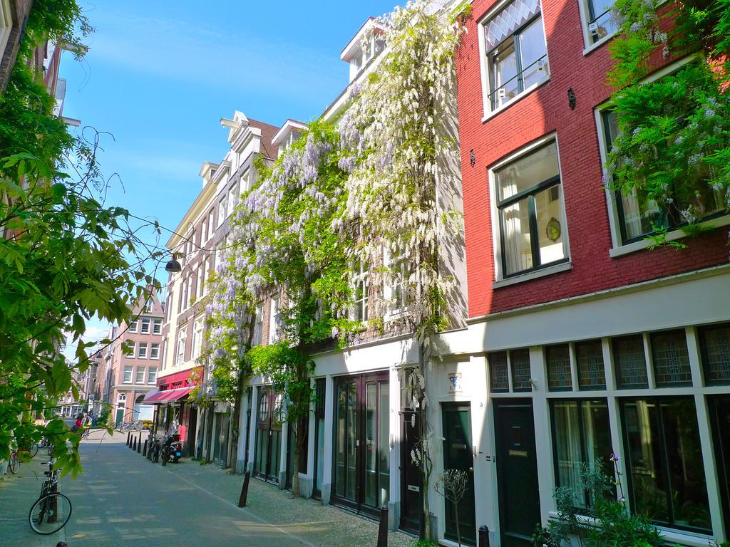 Amsterdamjordaan.com, hotels